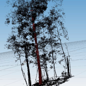 3Dレーザーによる計測結果
